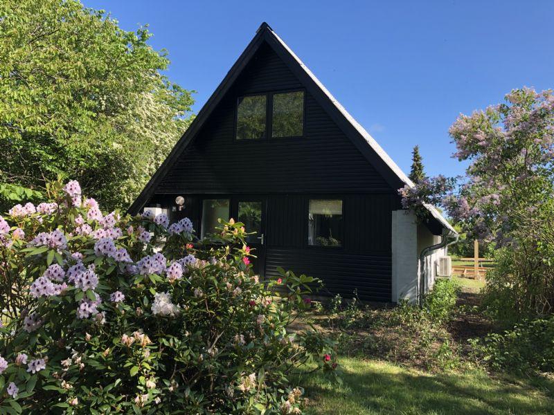 Ferienhaus 2607 - Hausfoto 1